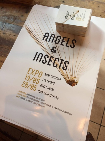 angels & insects (expo)